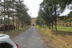Combat Center Lenti