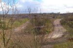 The Waste Land (Ile De France)
